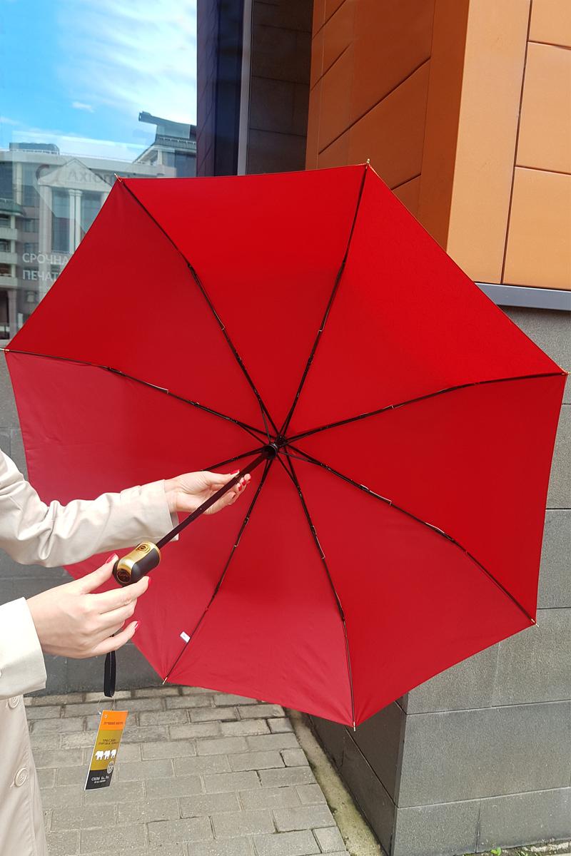 красный зонт три слона спицы купол